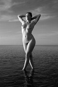 Artistiek naakt op de waddenzee