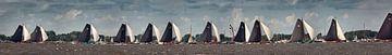 Skutsjesilen, race met platbodem zeilschepen van Frans Lemmens