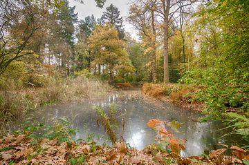 Herfst in Nederland van Mark Bolijn
