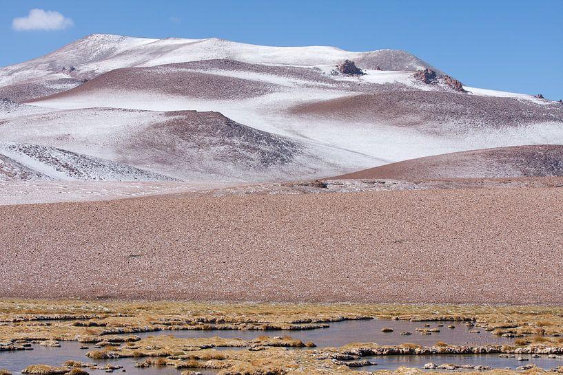 San Pedro de Atacama van Eriks Photoshop by Erik Heuver