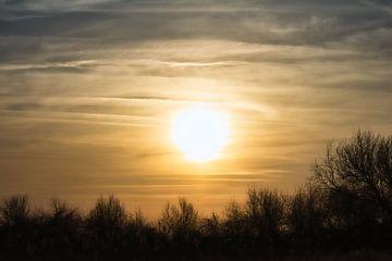 Sonnenuntergang über den Dünen von Faucon Alexis