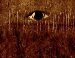 Goldener Blick