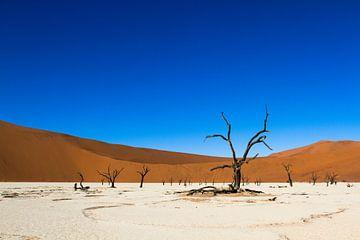 Deadvlei - landschap in Namibie van Frans Gesell