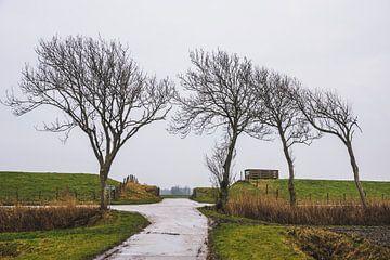 Route à travers la digue près de Pieterburen sur Paul van Putten