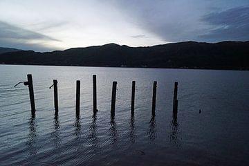 Pfähle im See. von Babetts Bildergalerie