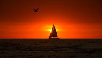 Sail Away van Nico Zwanenburg