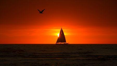 Sail Away von Nico Zwanenburg