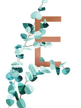 E - Eucalyptus van Goed Blauw