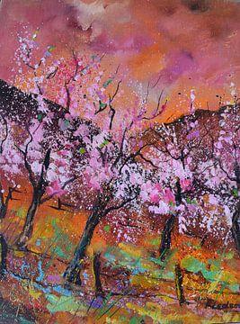 Kirschblüten von pol ledent