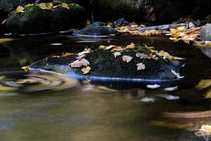 Ruisseau d'automne sur Borg Enders