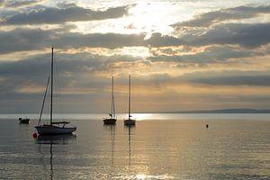 zonsopkomst zeiljachten van Marika Rentier