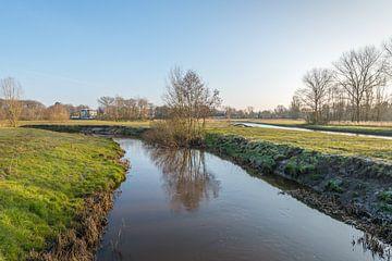 Bäume spiegeln sich im Wasser eines Baches wider. von Ruud Morijn