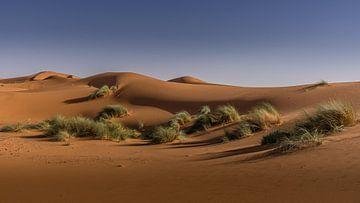 Sahara von Koos SOHNS   (KoSoZu-Photography)