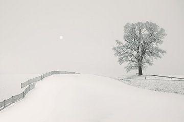 White Hillscape von Lena Weisbek