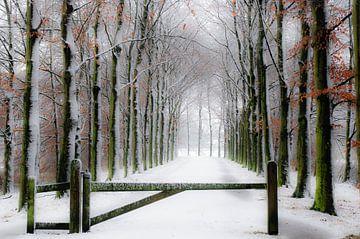 Winterdroom von Hetty van der Zanden