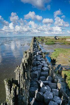 Landschaftsfoto Friesland Moddergat 01 von Lisenka l' Ami Fotografie