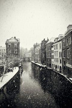 Heller und dunkler Hain in Utrecht bei einer Schneedusche im Vintage-Look (monochrom) von De Utrechtse Grachten