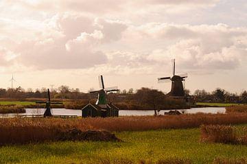 molens in de polder van Robert Lotman
