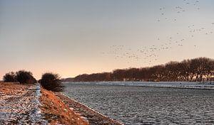 Vögel fliegen über den verschneiten Kanal durch Walcheren