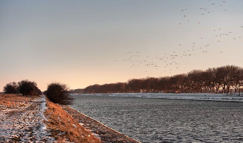Vögel fliegen über den verschneiten Kanal durch Walcheren von Percy's fotografie