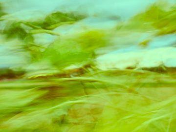 Sonnenblumen im Wind 7 van