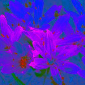 Bloemen in blauw en rose van Ina Hölzel