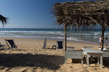 Strand in Sri Lanka von
