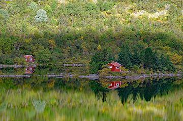Herbst auf den Lofoten von Reinhard  Pantke