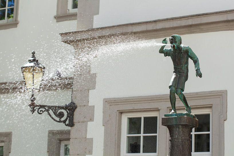 Schaengelbrunnen, Koblenz, Rheinland-Pfalz, Deutschland, Europa von Torsten Krüger