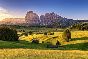 Alpe di Siusi Zuid-Tirol van Armin Leins