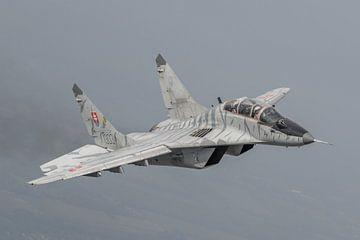 MIG 29 UB van de Slowaakse Luchtmacht, air-to-air gefotografeerd. van Jaap van den Berg
