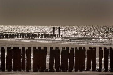 Strandpalen aan de Zeeuwse kust van Alfred Meester