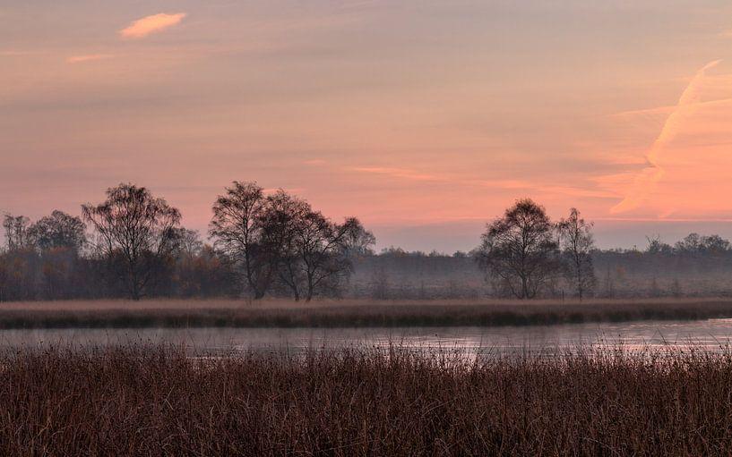 Autumn Silhouettes van William Mevissen