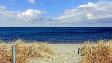 Strandaufgang sur Ostsee Bilder
