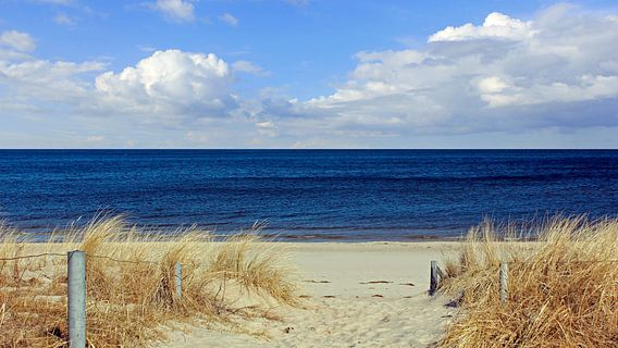 Strandaufgang van Ostsee Bilder