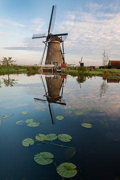 Seerosenmühle in Kinderdijk von Sander Groenendijk