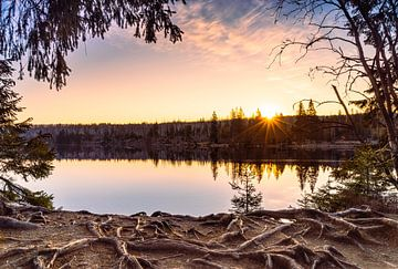 Sonnenaufgang am Oderteich von Steffen Henze