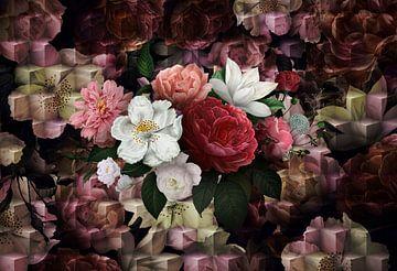 Royal D Blumen von Rudy & Gisela Schlechter