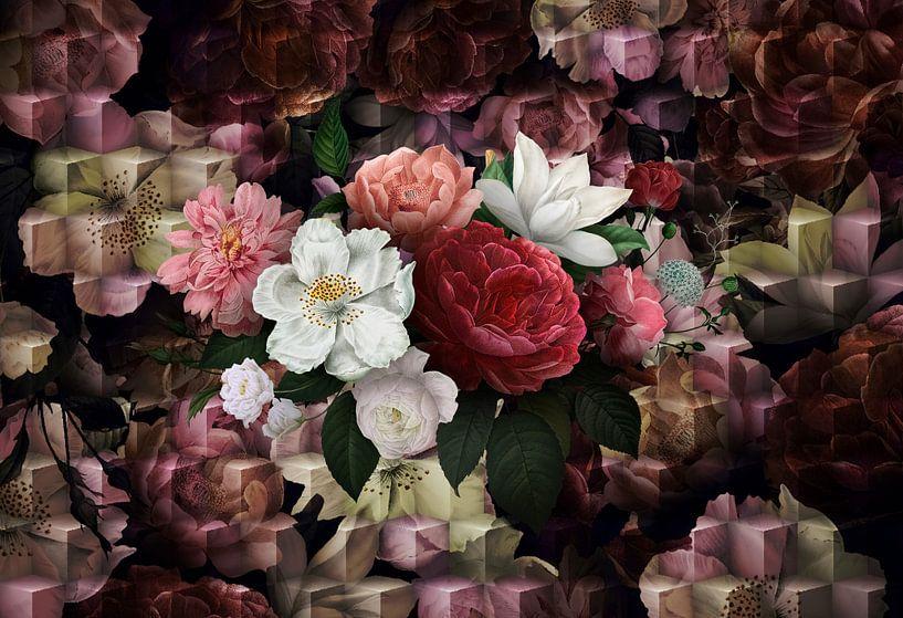 Fleurs Royal D sur Rudy & Gisela Schlechter