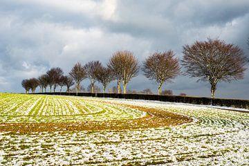Winterlandschaft, Bäume von Joep Deumes
