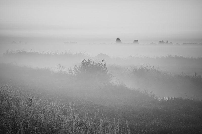 Lever de soleil brumeux dans l'Alblasserwaard sur Jan van der Vlies