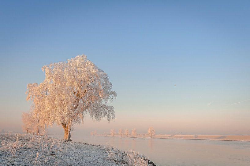Winter aan de maas van Erwin Stevens