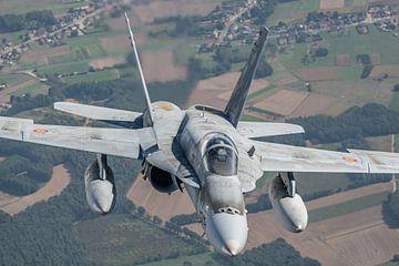 Mc Donnell Douglas EF-18 Hornet der spanischen Luftwaffe im Luft-Luft-Vergleich über Belgien, Septem von Jaap van den Berg