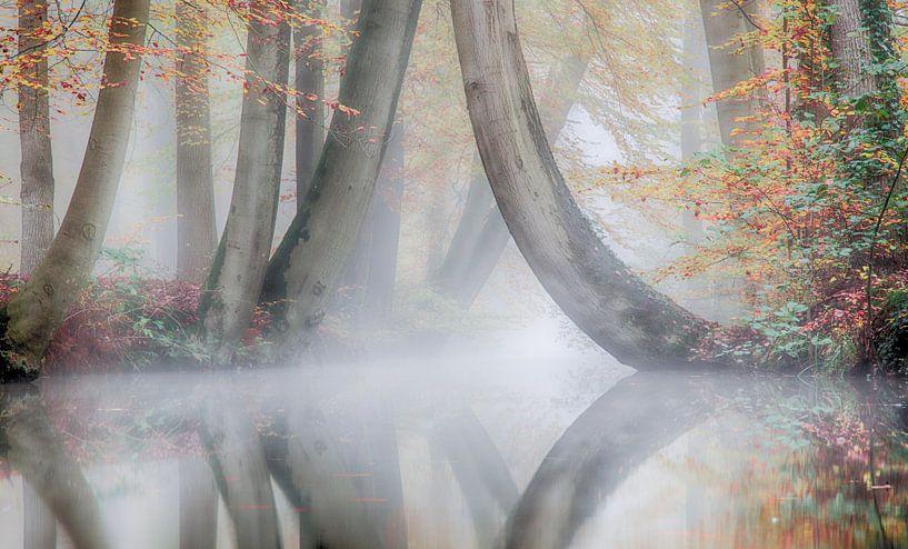 Herfst en mist in een prachtig landschap ( twickel ) van Dirk jan Duits