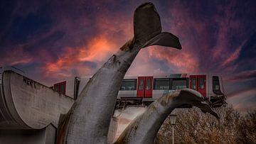 Vom Schwanz des Wals gerettet von Martin Simmons