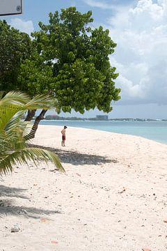 Cayman Islands von Carmen Lieven