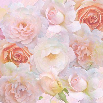 Rose Traum von Thea Walstra