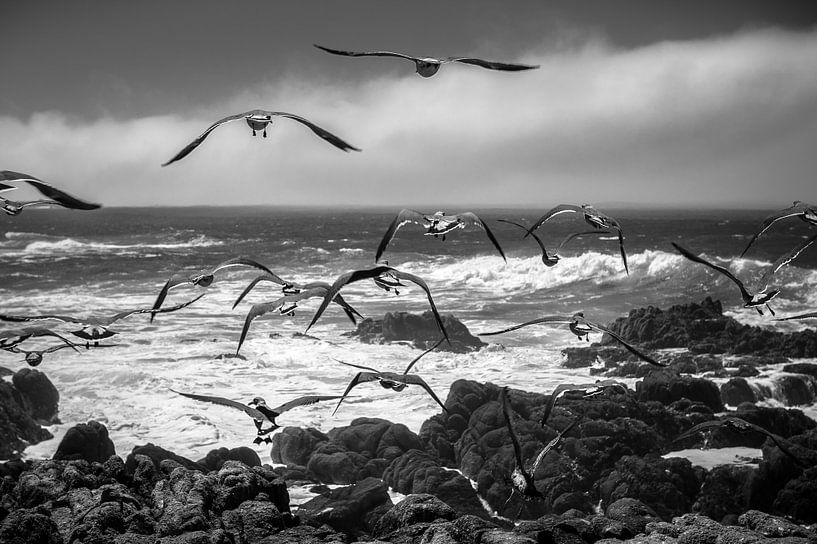 Pacific Coast sur Wim Slootweg