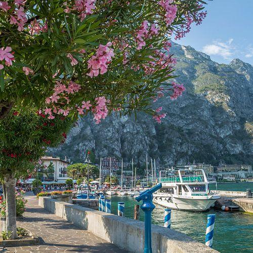 LAKE GARDA Harbour & Riverside in Limone sul Garda van Melanie Viola