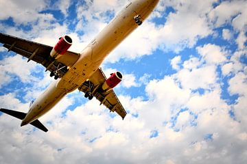 Landend Vliegtuig van Niek Van Helden